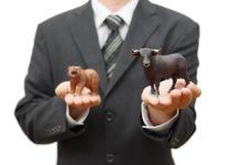 Kup i (wy)trzymaj, czyli inwestowanie w fazie ekspansji